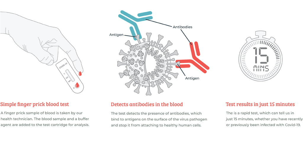What-to-expect-antibody